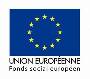 logo_drapeau_fse1